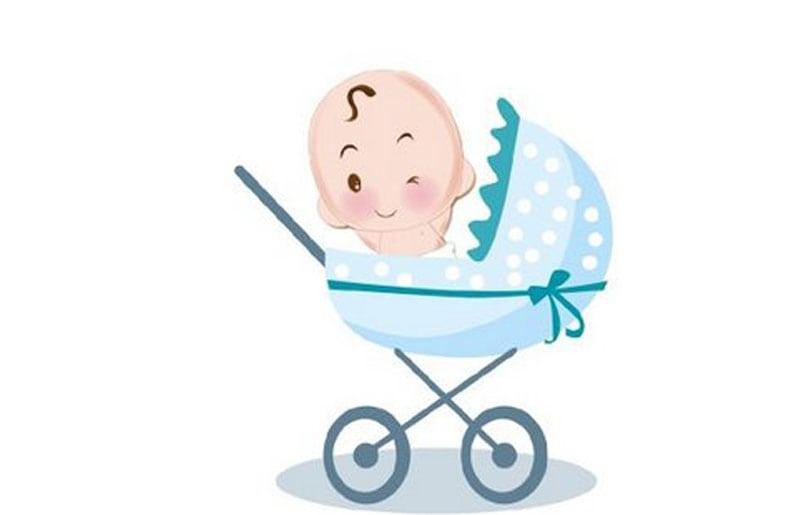 carriola de bebe