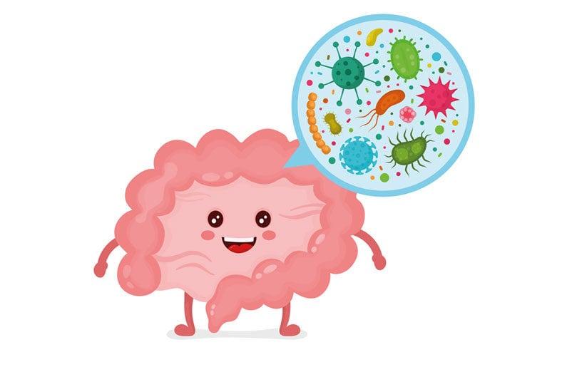 todo-lo-que-debes-saber-de-los-probioticos