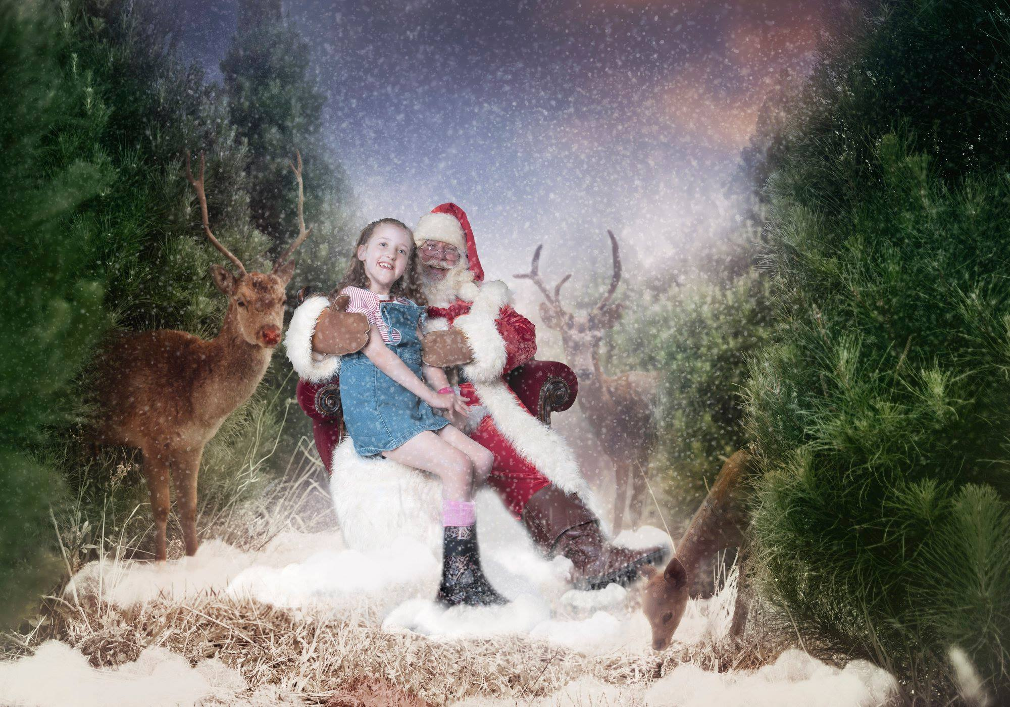 Chloe's Christmas
