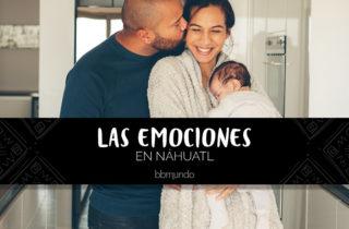 Galería: Las emociones en náhuatl